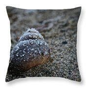 Cold Shell Throw Pillow