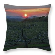 Cold Spring Orchard Throw Pillow