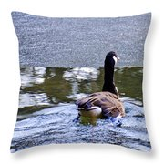 Cold Swim In The Pond Throw Pillow