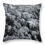 Cold Winter Snow Throw Pillow