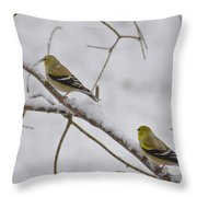 Cold Yellow Finch Walk Throw Pillow