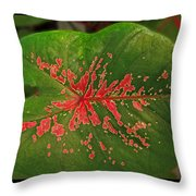 Colius Leaf Throw Pillow
