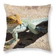 Collard Lizard Throw Pillow