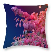 Color And Form Throw Pillow