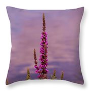 Color By The River Throw Pillow