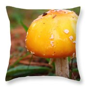Color In The Grass Throw Pillow