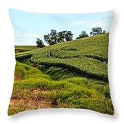 Color Me Green Throw Pillow