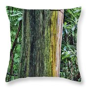 Color Of The Trees Throw Pillow