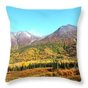 Color Palet Throw Pillow