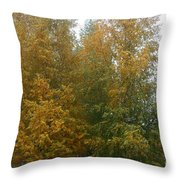 Color Rich Throw Pillow
