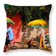 Color Throw Pillow by Skip Hunt