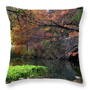 Color Splash In Central Park Throw Pillow
