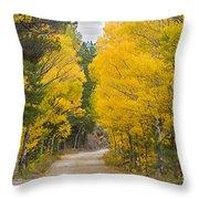 Colorado Autumn Aspen Road Boulder County Throw Pillow
