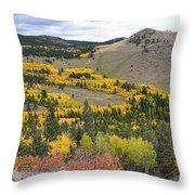 Colorado Autumn Aspens Colors Throw Pillow
