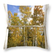 Colorado Autumn Aspens Picture Window View Throw Pillow