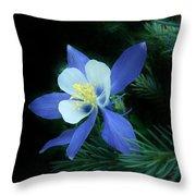 Colorado Christmas Ornament 3 Throw Pillow