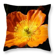 Colorado Flower Throw Pillow
