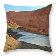 Colorado River Canyon 1 Throw Pillow