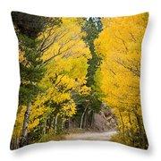 Colorado Rocky Mountain Aspen Road Portrait  Throw Pillow