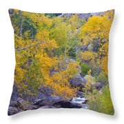 Colorado Rocky Mountain Autumn Canyon View Throw Pillow