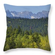 Colorado Rocky Mountain Continental Divide Autumn View Throw Pillow