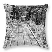 Colorado Rocky Mountain Forest Path Bw Throw Pillow