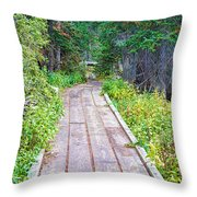 Colorado Rocky Mountain Forest Path Throw Pillow