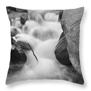 Colorado St Vrain River Trance Bw Throw Pillow