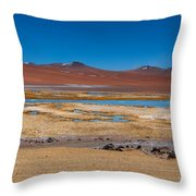 Colorful Altiplano Throw Pillow