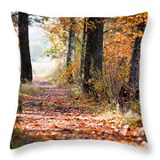 Colorful Autumn Landscape Throw Pillow