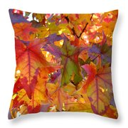 Colorful Autumn Leaves Art Prints Trees Throw Pillow