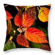 Colorful Blackberry Leaves 1 Throw Pillow