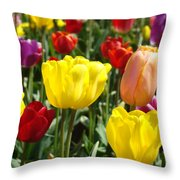 Colorful Bright Tulip Flowers Field Tulips Floral Art Prints Throw Pillow