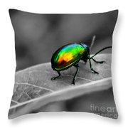 Colorful Bug Throw Pillow