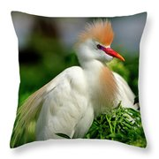 Colorful Cattle Egret Throw Pillow