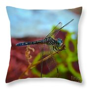 Colorful Dragon Fly Throw Pillow