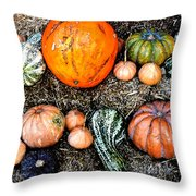 Colorful Fall Harvest Throw Pillow