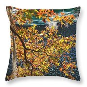 Colorful Fall Leaves Over Blue Water Throw Pillow