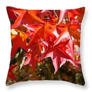 Colorful Fall Tree Red Leaves Art Prints Throw Pillow