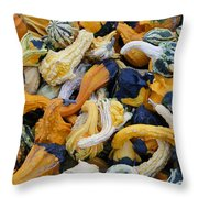 Colorful Mix Of Gords Throw Pillow