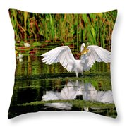 Colorful Morning At The Wetlands Throw Pillow