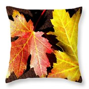Colorful Pair Throw Pillow