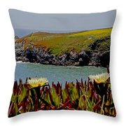 Colorful Point Throw Pillow