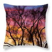 Colorful Silhouetted Trees 26 Throw Pillow