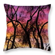 Colorful Silhouetted Trees 27 Throw Pillow