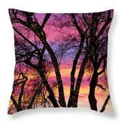 Colorful Silhouetted Trees 33 Throw Pillow