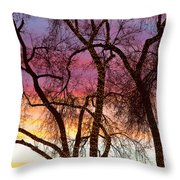Colorful Silhouetted Trees 37 Throw Pillow