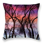 Colorful Silhouetted Trees 9 Throw Pillow