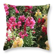Colorful Snapdragons In San Antonio Throw Pillow
