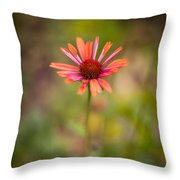 Colorful Stand Throw Pillow
